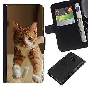 eJoy---La carpeta del tirón la caja de cuero de alta calidad de la PU Caso protector - HTC One M7 - --Orange Cat American British Shorthair