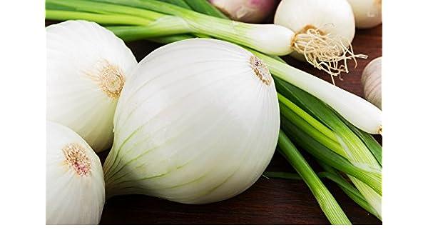 BIO - Cebolla blanca de invierno