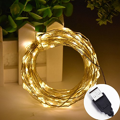 Outdoor Led Rice Lights - 8