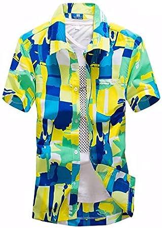 LFNANYI Nueva s Camisa de Playa Hombres Camisa Hawaiana Playa de Moda de Ocio Camisa Floral Tropical Playa Hawaiana 5XL L: Amazon.es: Deportes y aire libre