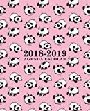 Agenda escolar 2018-2019: 190 x 235 mm: Agenda 2018-2019 semana vista español: 160 g/m²: Agenda semanal 12 meses: Panda osos en rosa (Spanish Edition)