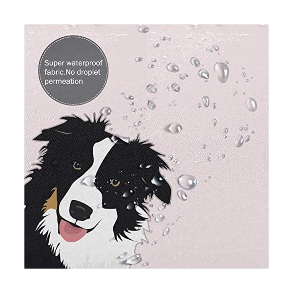"Perfect Appearance Border Collie Shower Curtain 7-12 Grommet Holes Waterproof Thick Bathroom Plastic Shower Curtains 55.1"""" W X 71.1"""" H No Chemical Odor Rust Proof Grommets 5"
