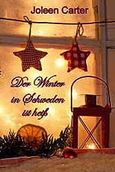 Der Winter in Schweden ist heiß - Erotische Geschichte