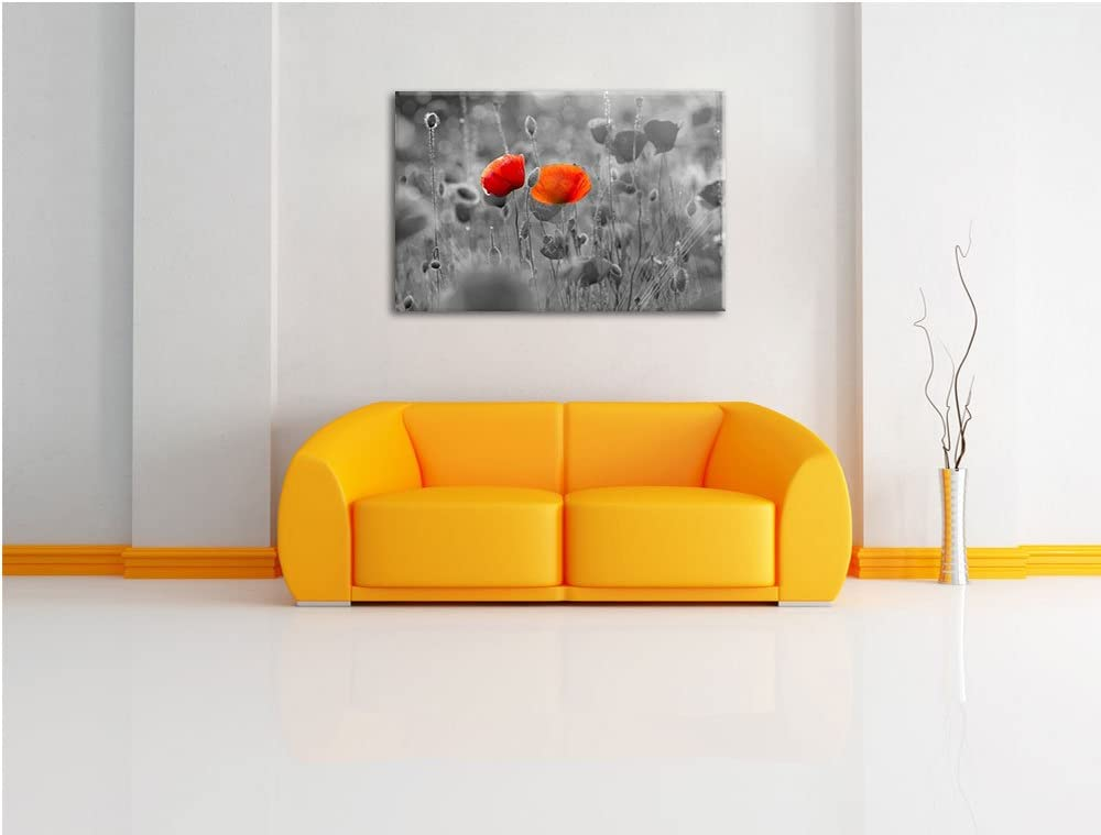 Coquelicots sur Mohnwiese noir // blanc Taille: 60x40 sur toile pas une impression dart sur murale avec cadre XXL /énormes Photos compl/ètement encadr/ées avec civi/ère moins cher que la peinture ou une peinture /à lhuile