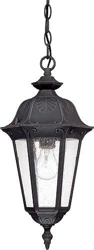 Nuvo Lighting 60 2038 One Light Hanging Lantern