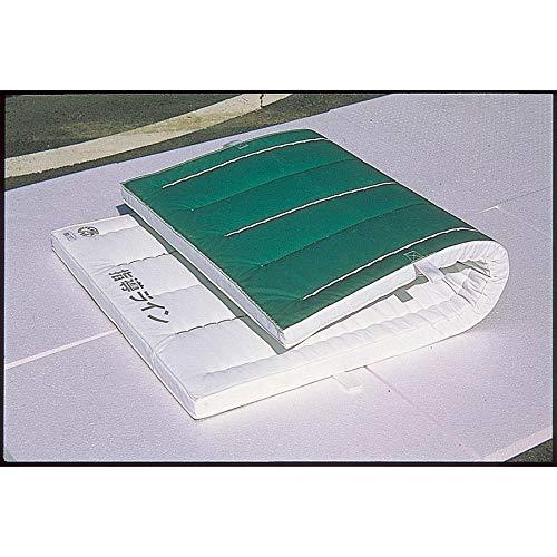 E-233 ノンスリップエコマット オール合成スポンジ 厚さ6cm 再生エステル白スポンジコンビ120X300X6cm B07HJ2SNG9