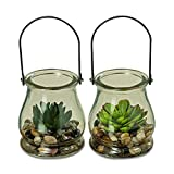 Whole House Worlds The Farmer's Market Realistic Faux Succulents, Set of 2, Bell Shaped Clear Glass Mason Jar Terrarium with Loop Handle, 4 Inches Tall, By WHW