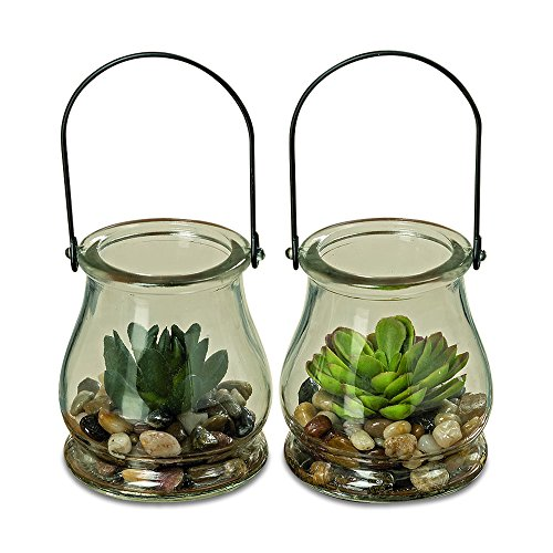 WHW Whole House Worlds Farmers Market Realistic Faux Succulents, Set of 2, Bell Shaped Clear Glass Mason Jar Terrarium with Loop Handle, 4 Inches Tall]()