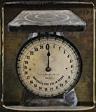 Great Art Now Nostalgica: Vintage Scale by Mindy Sommers Art Print, 22 x 26 inches