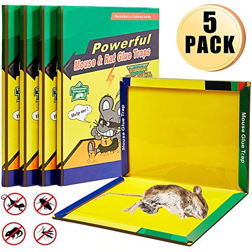 Mouse Trap, Mice/Rat Glue Traps, Peanut Butter Scented Mouse Glue Boards, Indoor and Outdoor Extra Large Sticky Boards, Suitable for Capturing Indoor and Outdoor Harmful Animals and Pests (5 Pack)