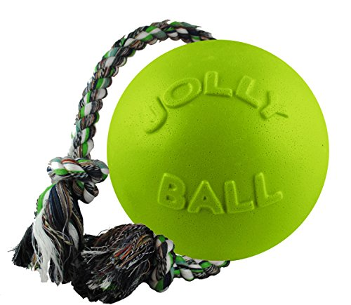 Jolly Pets Romp-n-Roll Rope and Ball Dog Toy, 4.5 Inches/Small, Apple Green, Model:645 Apple