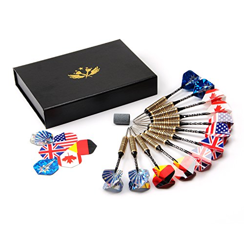 [12 Packs] Steel Tip Darts Set - 24 Grams Professional Darts with Brass Barrel and Alluminum Shaft + 18 Flights in 6 Styles + Sharpener + Case