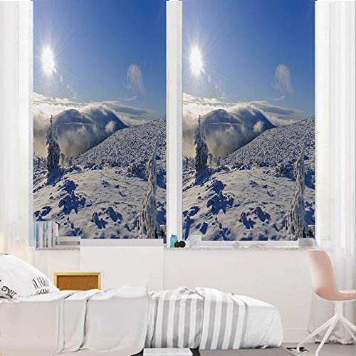 Winter 3D No Glue Static Decorative Privacy Window Films, Snowy Landscape from -