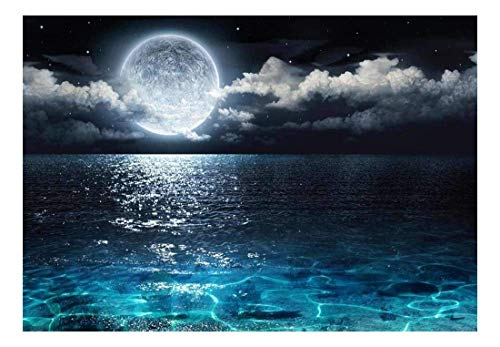 wall26 - Beautiful Ocean View with The Moon Resting Above it - Wall Mural, Removable Sticker, Home Decor - 100x144 inches (View Mural Wall Ocean)