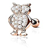 FIFTH CUE 16GA CZ Paved Owl Top 316L Surgical Steel Ear Cartilage Barbell Stud Labret Monroe