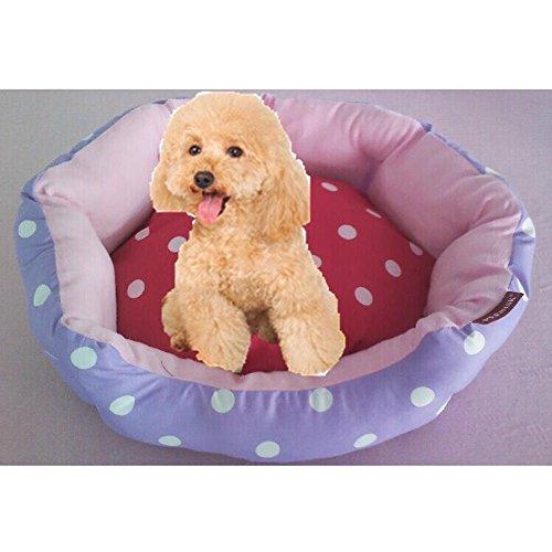 Weiwei Cama de Perro Punto de Onda Kennel Tela Imprimir Gatos de Pelo Corto Mat de desperdicios de Pet: Amazon.es: Productos para mascotas