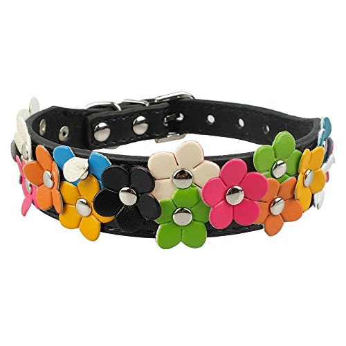 Beirui Cute PU Leather Dog Collar with Adorable Flowers Neck for Medium Dogs 13-15