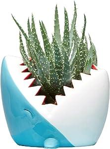 Streamline Ceramic Shark Flower Planter Pot