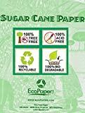EcoPaper Tree-Free Sugarcane Multipurpose Copy/Laser/Inkjet Printer Paper, 100% Recycled Sustainable, 92 Brightness, 20lb Density, Letter Size (8.5 x 11 Inch), Ream, 500 Total Sheets (B-ECOP8511-1)