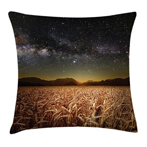 Space Throw Pillow Cushion Cover by Ambesonne, Wheat Field Meadow under Stars Clusters Twilight Harvesting Rural Art Print, Decorative Square Accent Pillow Case, 16 X 16 Inches, Tan - Twilight Throw Pillow