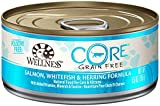 Wellness CORE Natural Grain Free Wet Canned Cat Food - Salmon Whitefish & Herring Recipe - 24x5.5oz