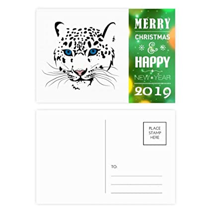 Amazon com : White Tiger Head Animal 2019 New Year Postcard