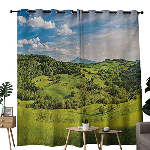 NUOMANAN backout Curtains for Bedroom Tuscany,Tuscany Italy Sunlight Homestead Plantation Farms Pathway Greenery Print,Sky Blue Apple Green,Pocket Thermal Insulated Tie Up Curtain 54