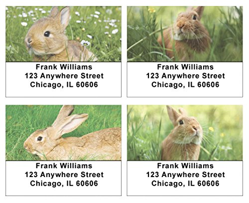 (Cute Bunny Address Labels)