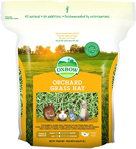 Rabbit Grass (Oxbow Animal Health Orchard Grass Hay for Pets, 15-Ounce)