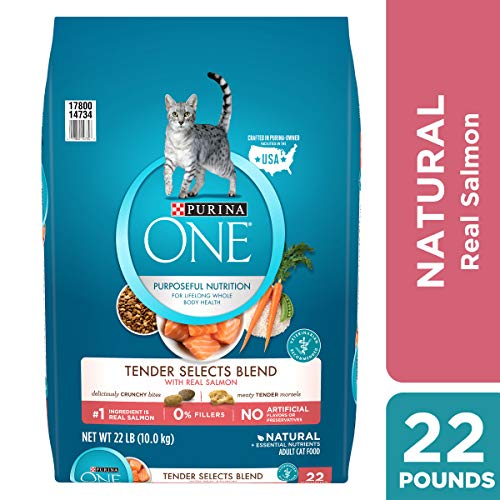 Purina ONE Natural Dry Cat Food, Tender Selects Blend With Real Salmon - 22 lb. Bag