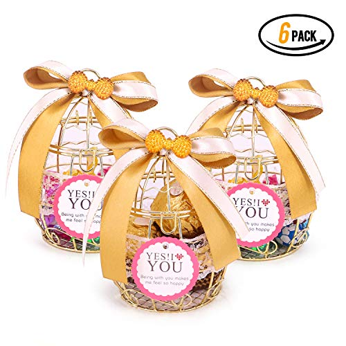 Party Favor Box, Hollow Bird Cage Wedding Party Gift Tinplate Box Container for Chocolate Candy,6 Pack (Party Favor Bird Cages)