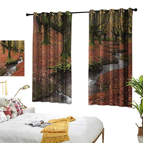 G Idle Sky Polyester Curtain Landscape Printing Insulation Flowing Stream Autumn 63