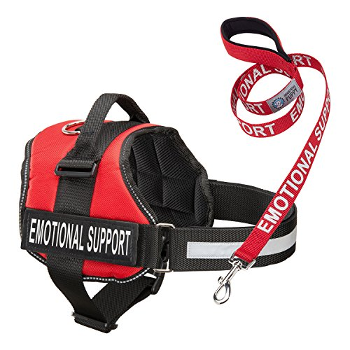 Service Dog Vest Harness with EMOTIONAL SUPPORT Patches and Matching Leash, Emotional Support Animal Vest and Matching Leash Set, by Industrial Puppy (Small, Red)