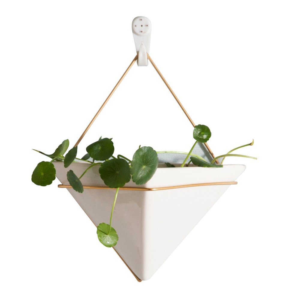 Hanging Planter For Indoor Plants, Geometric Wall Decor Container - Great For Succulent Plants, Air Plant, Faux Plants,White Ceramic/Brass by Purzest