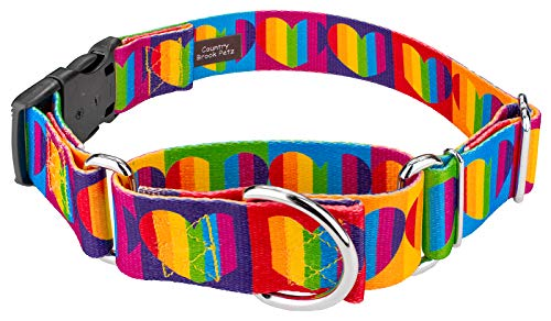 Country Brook Petz | 1 1/2 Inch Rainbow Hearts Martingale with Deluxe Buckle Dog Collar - Large