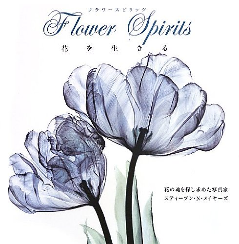 フラワースピリッツ  花を生きる