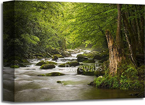 Peacefulグレートスモーキー山脈国立公園Foggy Tremont川Relaxing Nature Landscape Scenics near Gatlinburg TnギャラリーWrappedキャンバスアート 11in. x 14in. B075WNFTDS  11in. x 14in.
