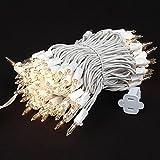 Novelty Lights 100 Light Clear Christmas Mini Light Set - White Wire - 50' Long