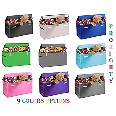 Prorighty Collapsible Toy Chest for Kids (XX-Large) Storage Basket w/Flip-Top Lid   Toys Organizer Bin for Bedrooms, Closets, Child Nursery   Store Stuffed Animals, Games, Clothes (Light-Grey): Toys & Games