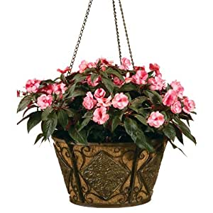 Deer Park Ironworks BA205 Diamond Hanging Basket with Cocoa Moss Liner
