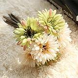 TiTCool 1 Bunch (7 Heads) Artificial Fake Flowers Leaf Magnolia Floral Wedding Bouquet Party Home Cozy Decor (D)