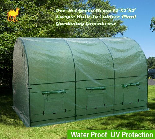 Strong Camel New Hot Green House 12'X7'X7' Larger Walk in Outdoor Plant Gardening Greenhouse by Strong Camel (Image #1)