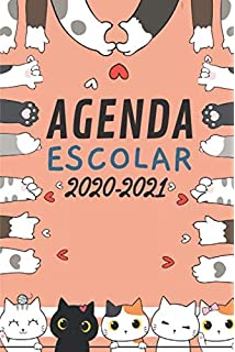 Agenda 2019. Gatos literarios: Vv.Aa, Vv.Aa: Amazon.es: Oficina y papelería