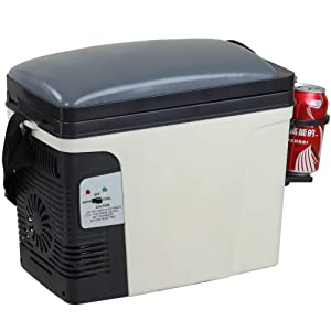 SMETA 12V Thermoelectric RV Car Cooler Warmer Portable Mini Truck Refrigerator 110V Office Home Food Heater Beverage Cooler Fridge,6L