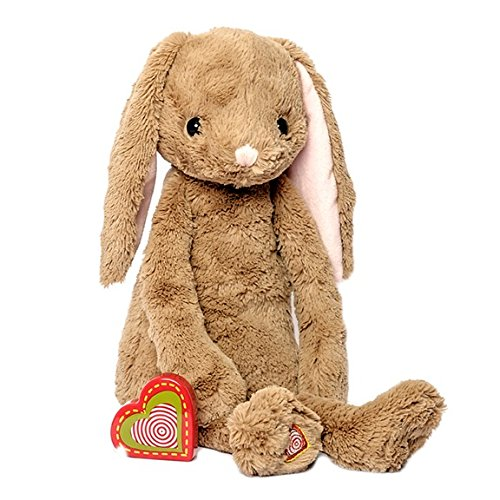 (My Baby's Heartbeat Bear - Vintage Stuffed Bunny with a 20 Second Voice/Sound Recorder Keeps Your Baby's Ultrasound Heartbeat Safe! - Vintage Bunny)