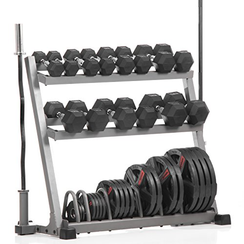XMark POWERHOUSE II Package Loaded Dumbbell and Plate Weight Rack with Bar Storage, Lumberjack Olympic Bar, Olympic EZ Curl Bar, 350 lb. Set of Hex Dumbbells and 365 lbs. of Texas Star Olympic Plates by XMark