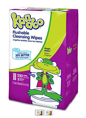 Toilet Natural Training (Kandoo Kids Flushable Wipes Refill, Potty Training Cleansing Cloths, Magic Melon, 250 Count (Pack of 4))