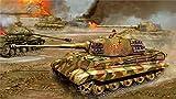 Ryan Beers Art World War II ww2 Panzerkampfwagen VI Tiger II Konigstiger heavy tank flames of war Tiger II is-2 Canvas Poster