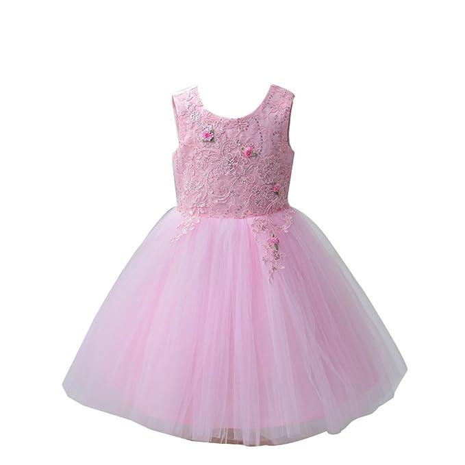 ZAMME Niñas Vestidos de Color Rosa Vestidos de Las Niñas Vestido de Fiesta de la Princesa