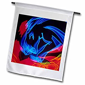 Danita Delimont - Artistic Abstracts - Neon Colors and Lighting with Nightzoom-AB01 MGI0047 - Mark Gibson - 12 x 18 inch Garden Flag (fl_69825_1)